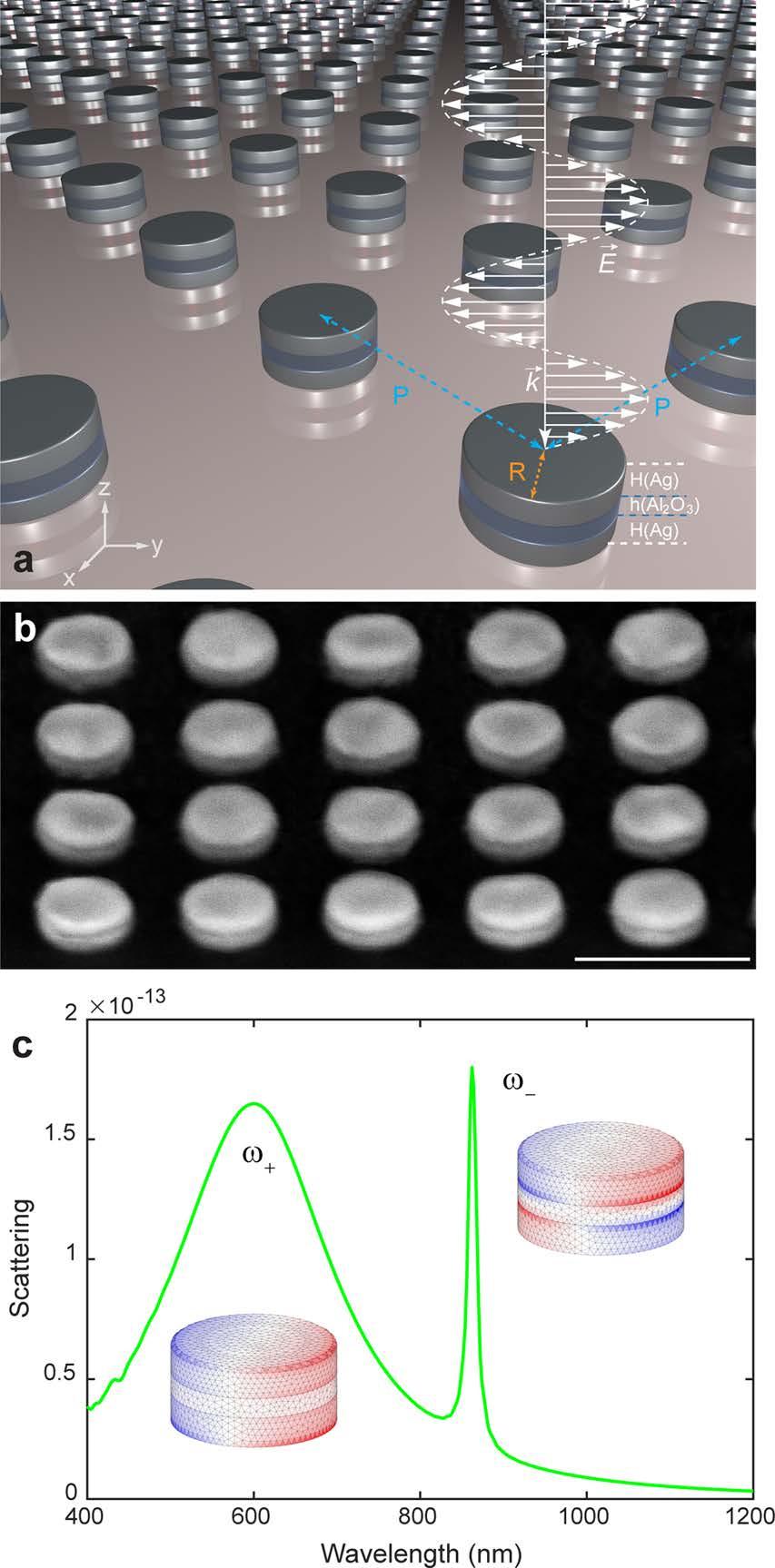 Мета-материалы: оптические иллюзии структурного цвета - 2