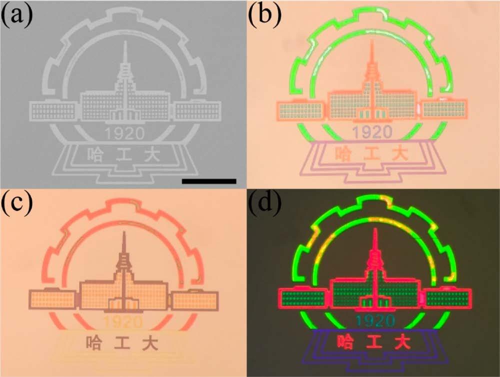 Мета-материалы: оптические иллюзии структурного цвета - 7