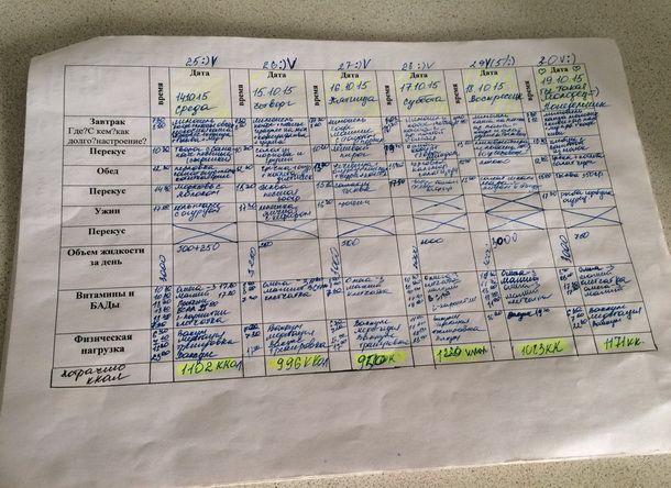 Разработка интерфейса приложения для пожизненного использования на примере мобильного дневника диабета - 3
