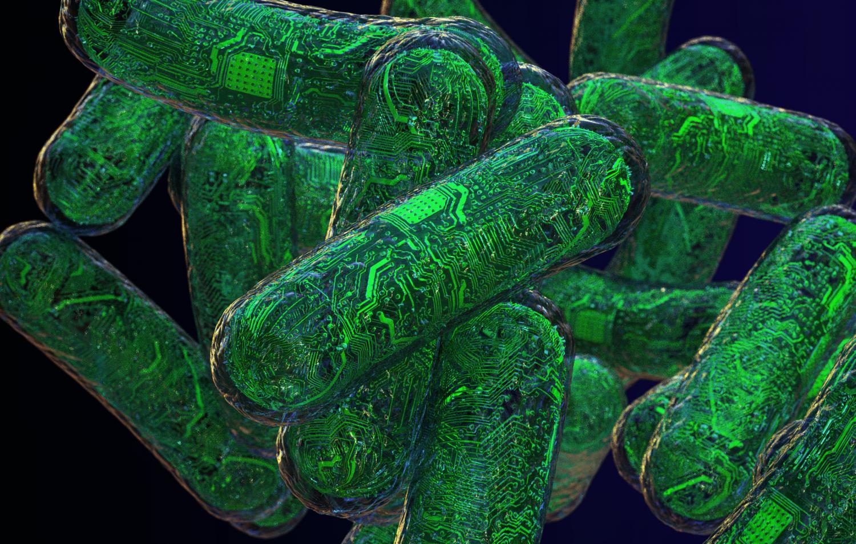 Новые наноустройства из РНК могут воспринимать и анализировать множество сложных сигналов в живых клетках - 1