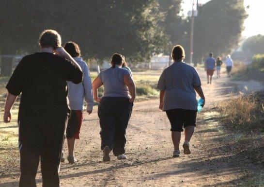 Ученые поняли, почему в мире эпидемия ожирения