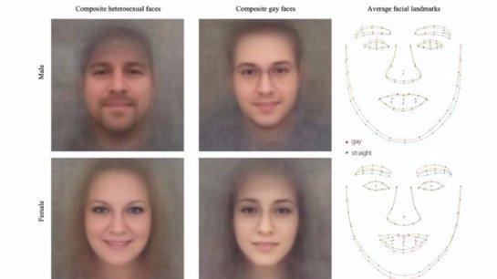 Появилось программное обеспечение, которое «идентифицирует гей-лица»