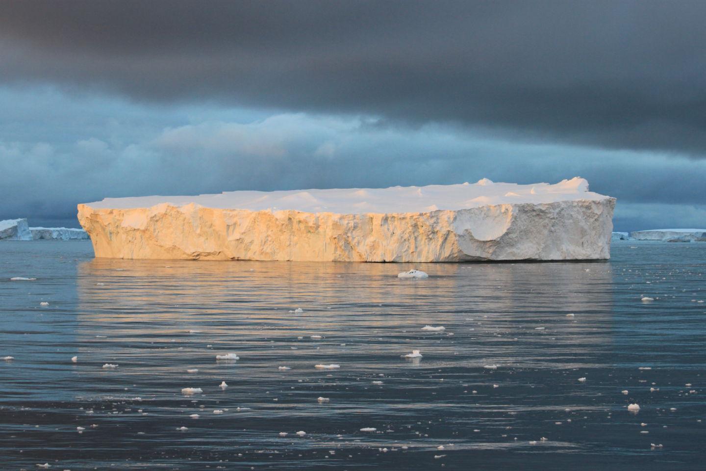 Истории из жизни IT-специалиста на судне, прошедшем вокруг Антарктики - 18