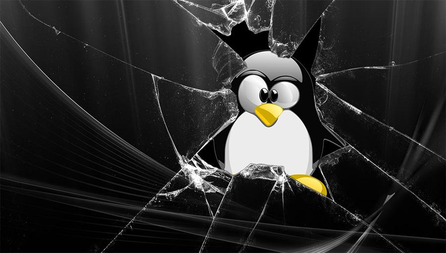Kali Linux: политика безопасности, защита компьютеров и сетевых служб - 1