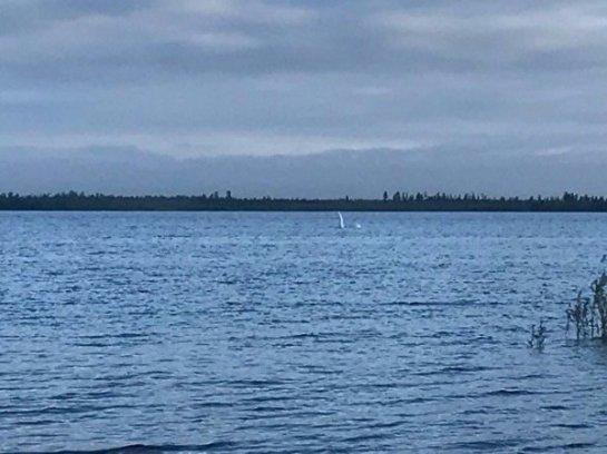 Озеро Ханто хотят возродить