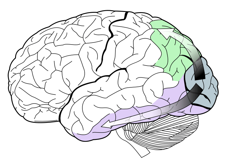 Иллюзия движения - 2