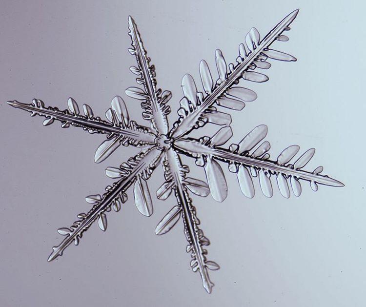 Спросите Итана: могут ли возникнуть две идентичные снежинки? - 4