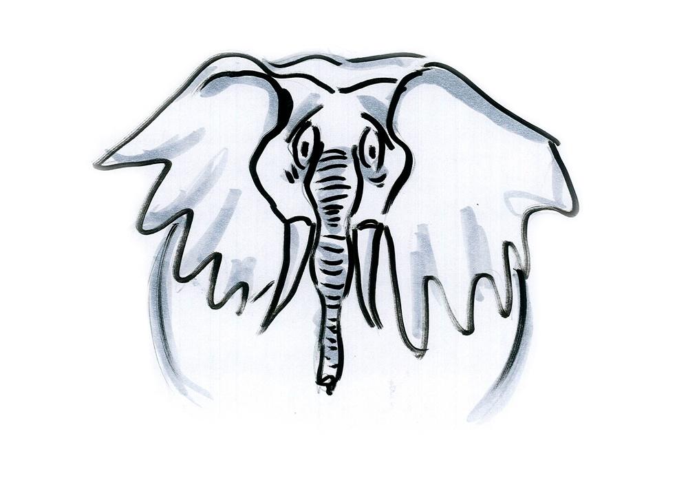 Почему слоны не взрываются: как природа справляется с крупным размером - 4