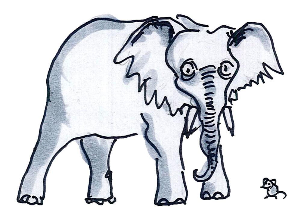 Почему слоны не взрываются: как природа справляется с крупным размером - 5
