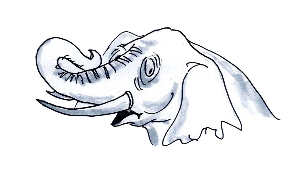 Почему слоны не взрываются: как природа справляется с крупным размером - 7