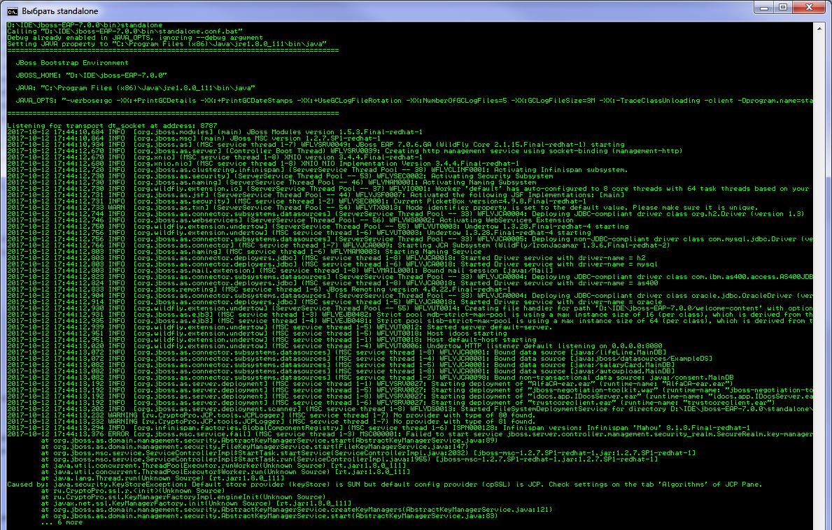 Настройка двусторонней RSA и GOST аутентификации в приложении на JBoss EAP 7 - 19
