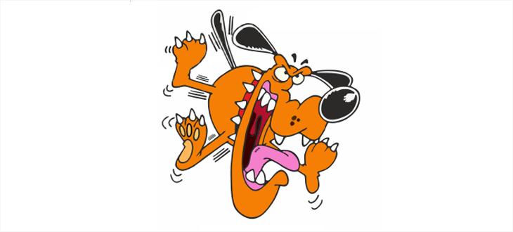 Осторожно! Злая собака! Или как укротить форму регистрации - 1
