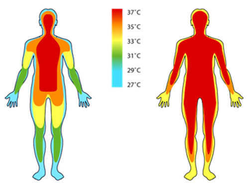 Ноябрь. Время инфракрасных градусников: посмотрите на BWell - 2