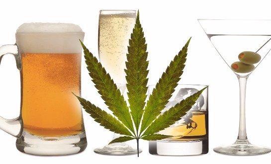 Специалисты рассказали, как марихуанна и алкоголь влияют на успешность человека