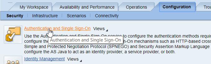 Настройка аутентификации в SAP Netweaver AS Java (Часть 1 из 3) - 8