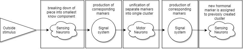 Теоретическая Нейробиология. Часть вторая. Сингулярность? - 4