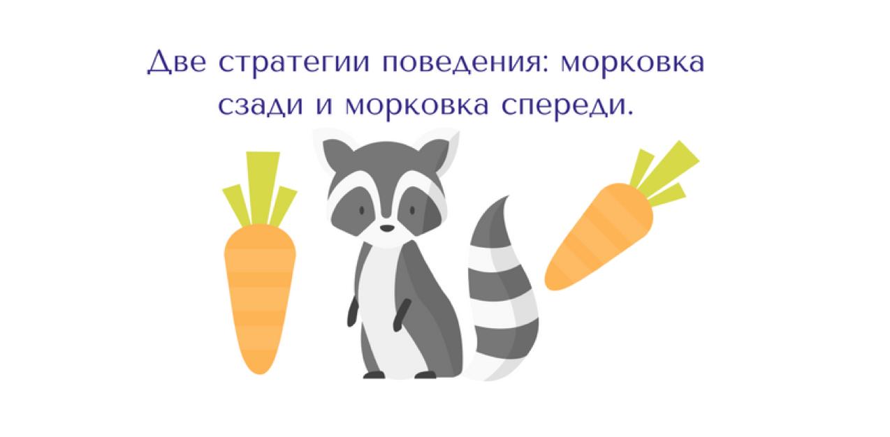Система мотивации: морковка спереди или морковка сзади - 1
