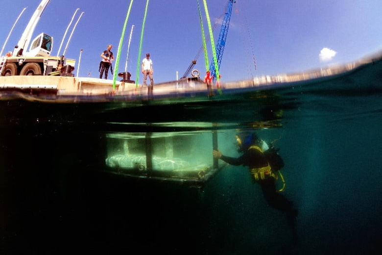 В заливе возле Монако установили 3D-печатные коралловые рифы - 2