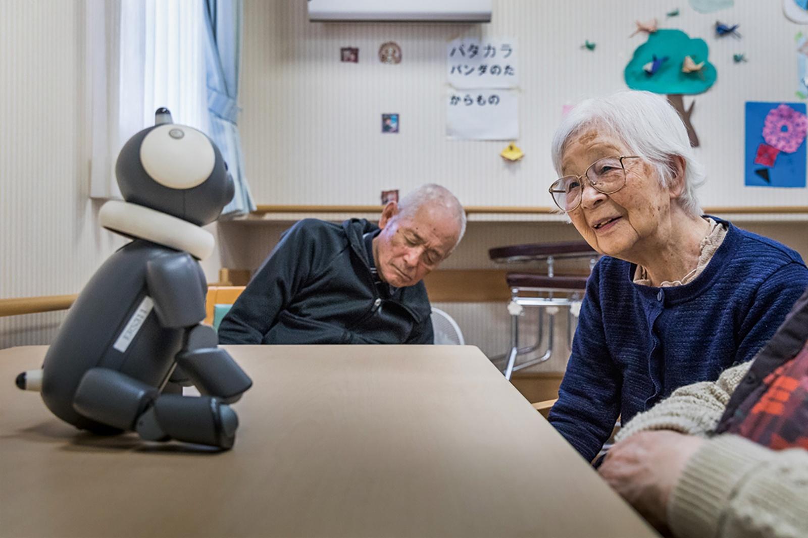 Робот-опекун вместо сиделки. Оценит ли бабушка? - 3