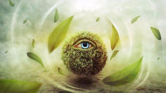 ГМО-растения будут использовать для шпионских целей