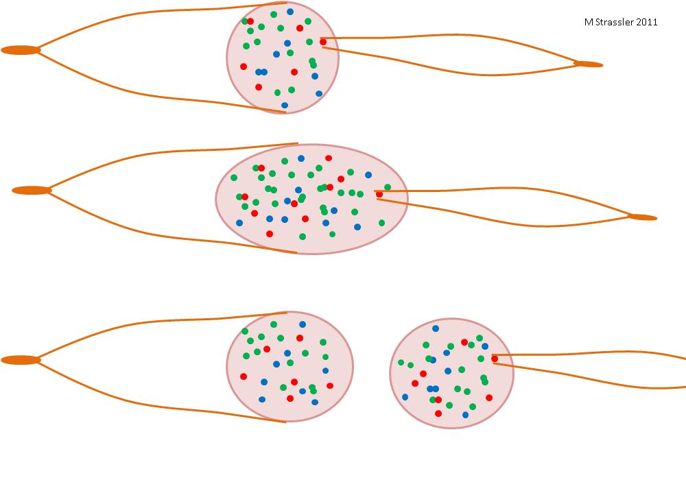 Струи: проявления кварков и глюонов - 1