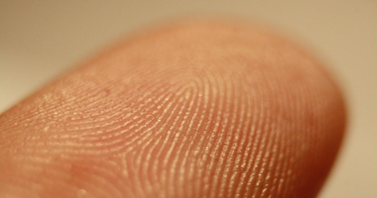 Биометрическая аутентификация: истоки, хаки и будущее - 3
