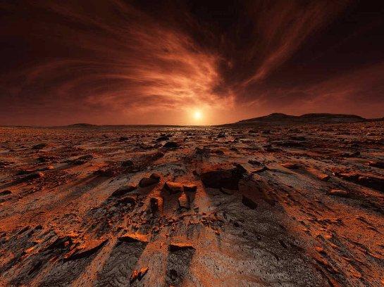 На Марсе смогут прожить черви
