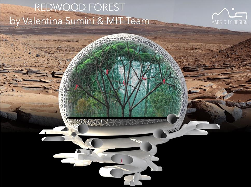 Итоги конкурса на дизайн марсианских городов Mars City Design 2017 - 2
