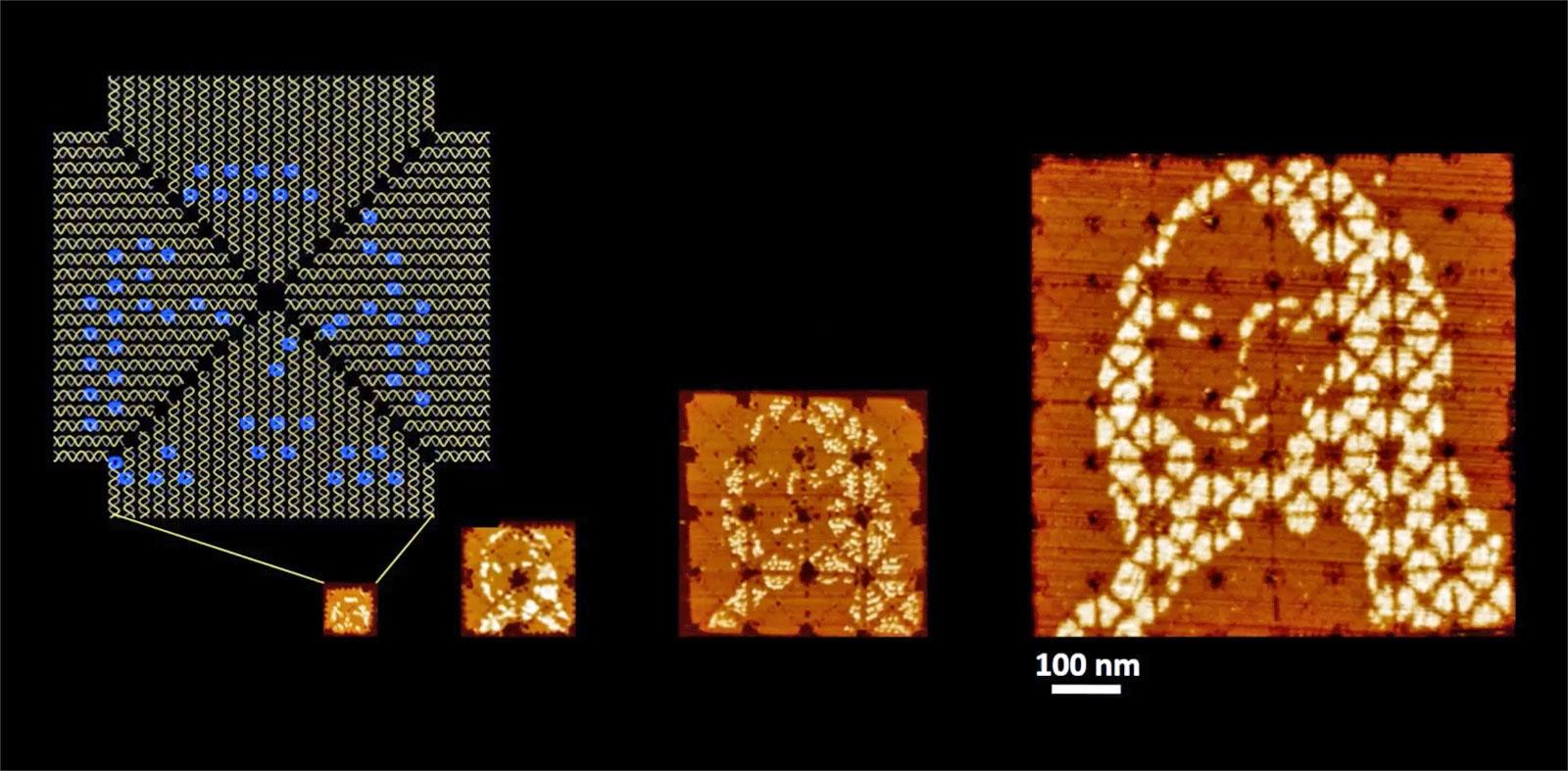 Самую маленькую Мону Лизу в мире создали при помощи ДНК - 1