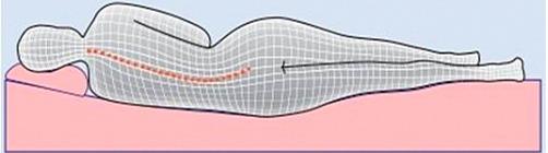 Позвоночник гика, или Матрас, на котором мы спим, не менее важен, чем кресло, в котором мы работаем - 4