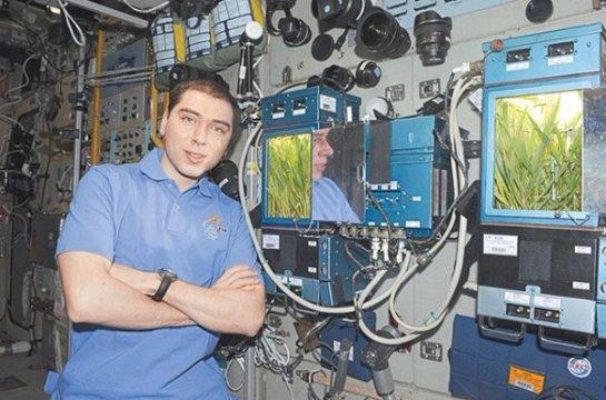Специалисты рассказали об овощах, выращенных в космосе
