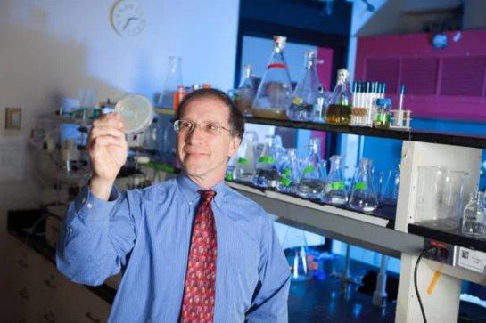 Синтетический фермент может стать катализатором искусственной жизни