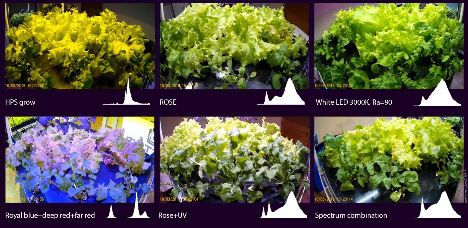 Оценить PPFD при освещении растения белыми светодиодами просто: 1000 лк=15 мкмоль-с-м2 - 2