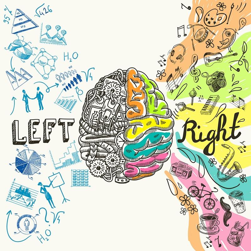 Как программирование влияет на мозг и мышление - 1
