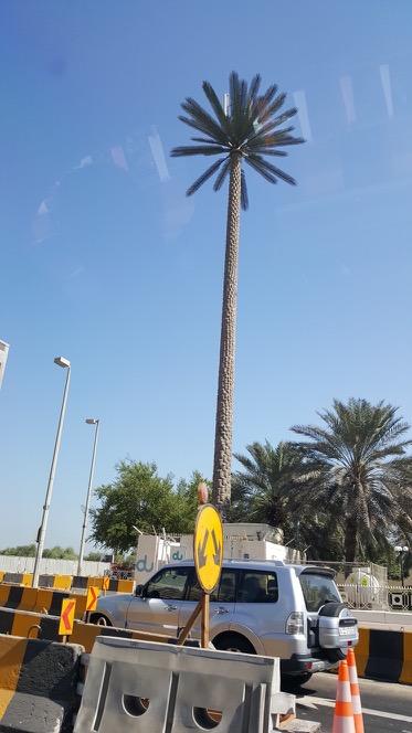 Интернет и мобильная связь в ОАЭ - 16