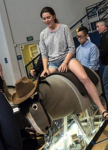 В университете Райса создан шестиногий робот для иппотерапии