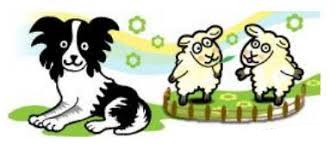 Sheepdog - 1