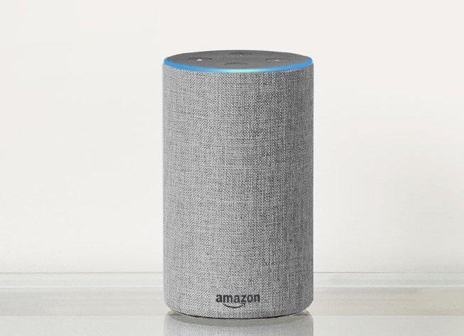 Движущей силой выступают, в частности, умные колонки Amazon и Google