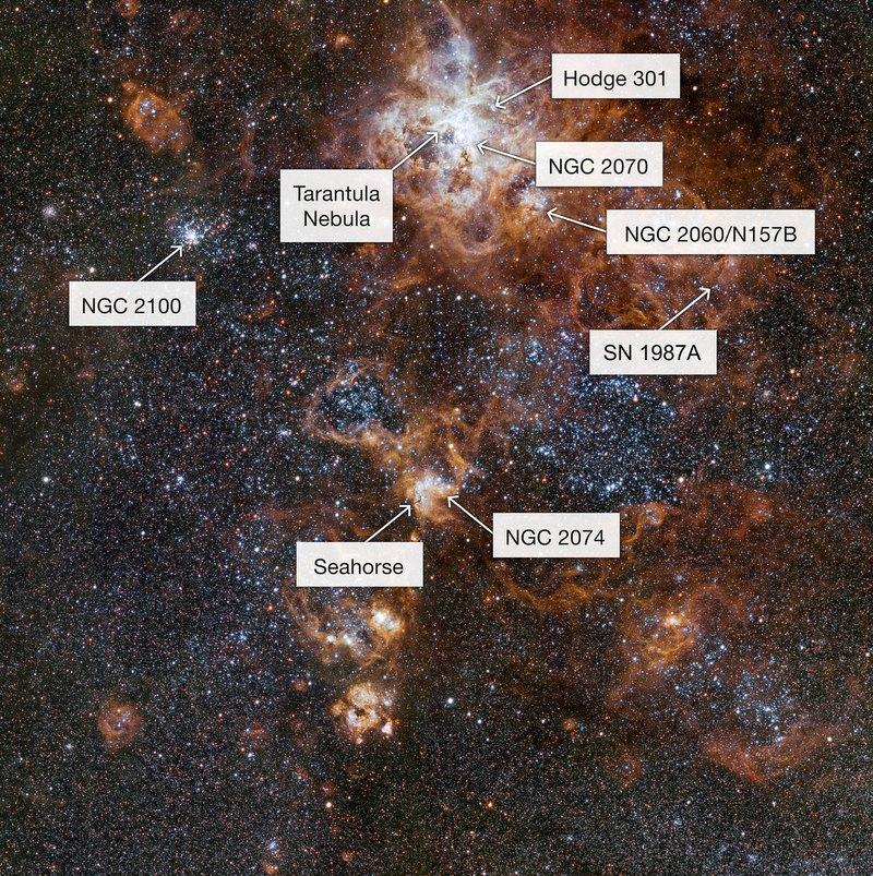 Самое детальное изображение туманности Тарантул