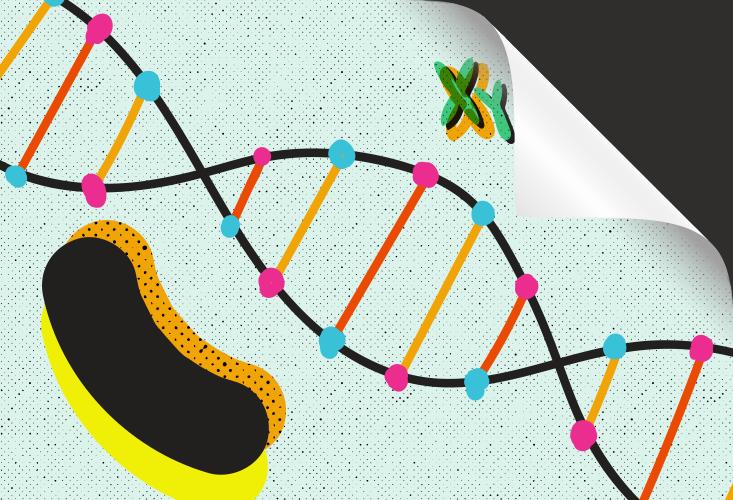 Наследственность за пределами генетики - 3