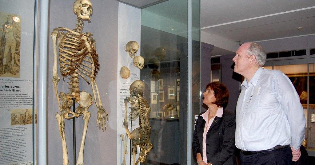 Скелет гиганта из лондонского музея похоронят спустя 200 лет