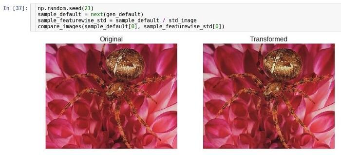 AI, практический курс. Предобработка и дополнение данных с изображениями - 12