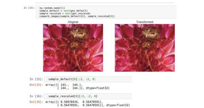 AI, практический курс. Предобработка и дополнение данных с изображениями - 6