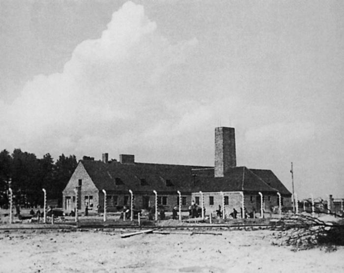 Как нам удалось прочитать рукопись, найденную в 80-х возле третьего крематория в Аушвице-Биркенау - 3