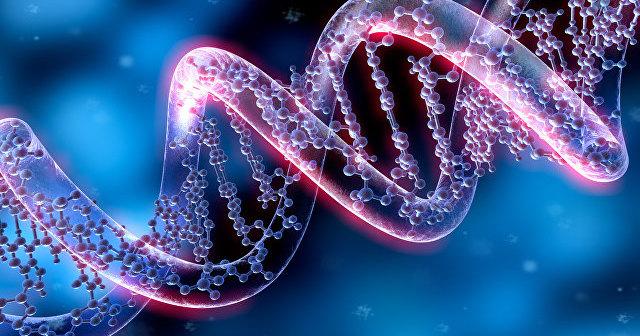Генная терапия поможет в лечении инфаркта миокарда