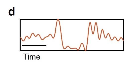 Темные солитоны, частотные гребни, микрорезонаторы и 80 км оптоволоконного кабеля - 7