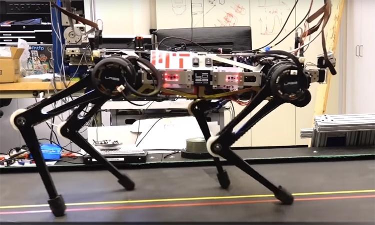 Видео дня: робот Cheetah 3 демонстрирует различные стили движения