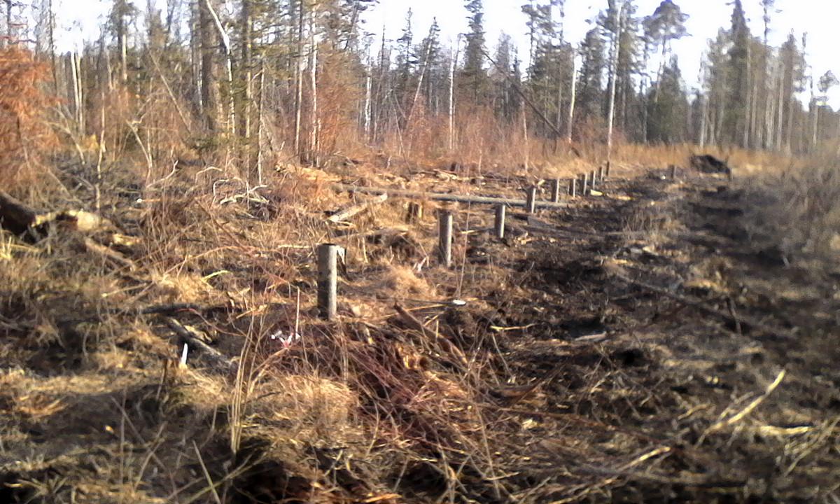 Север, воля, надежда, страна без границ (с), или Как делаются проекты в суровых сибирских условиях - 4