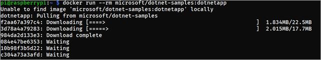 .NET Core + Docker на Raspberry Pi. А это законно? - 2