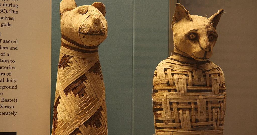 В Египте нашли «фабрику мумий»